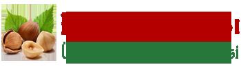 Fındık satış sitesi | Kavrulmuş fındık satış